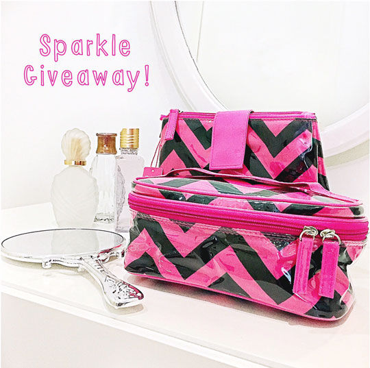 I'm giving away these cute travel pouches-slash-makeup bags from Simply She!